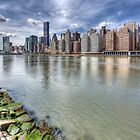 Manhattan from Roosevelt Island by David Tinsley