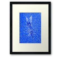 Water Angel Framed Print