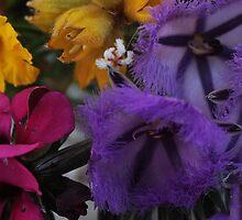 Lancelin Wild-flowers by myraj