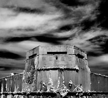 Military Building in Phoenix Park, Dublin by Dave  Kennedy