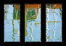 Reflections Triptych by David Carton