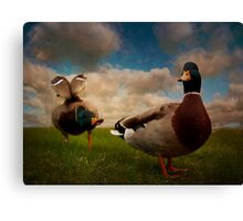 Quackers Canvas Print
