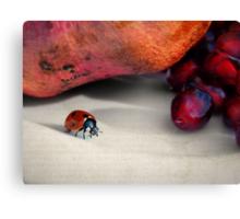 Forbidden fruit... Canvas Print