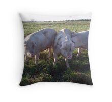 Three Fat Piggies Throw Pillow