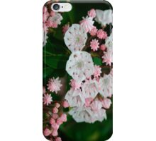 Mountain Laurel iPhone Case/Skin
