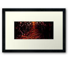 Follow The Light Framed Print