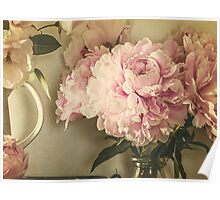 Painted Peonies -- Botanical Still Life Poster