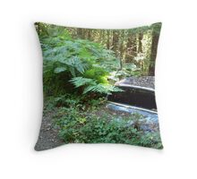 Forgotten on Willow Creek Road Throw Pillow