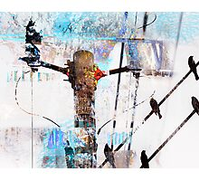Hi Voltage Love Nest Photographic Print