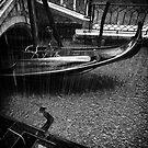 Gondola in the Rain, Venice, Italy by Javier Leite