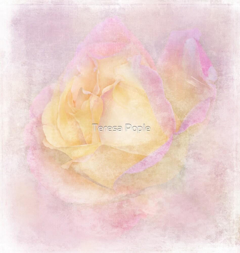 dreamland by Teresa Pople