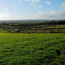 Farmland in Winter by MidnightMelody