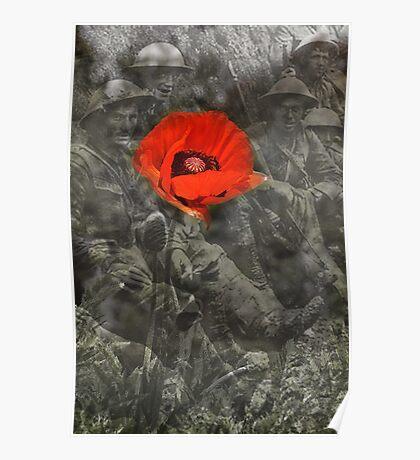 In Flanders Fields Poster