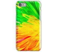 multi colored flower iPhone Case/Skin