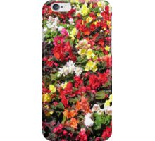 Summer flowers in the park, for iPhone iPhone Case/Skin