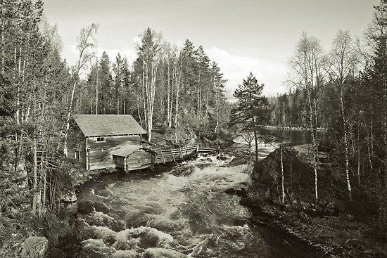 Finland by Dominika Aniola