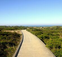 Path to the Great Southern Ocean by Chris Chalk
