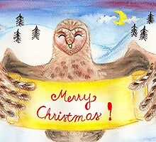 Barn Owl and Snow by Almonda