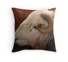 Herdwick Sheep 1 Throw Pillow