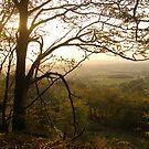 Late October Landscape, East Devon by Mike  Waldron
