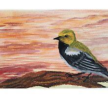 Goldfinch Among Sunset Sky  by Marissa Blackburn