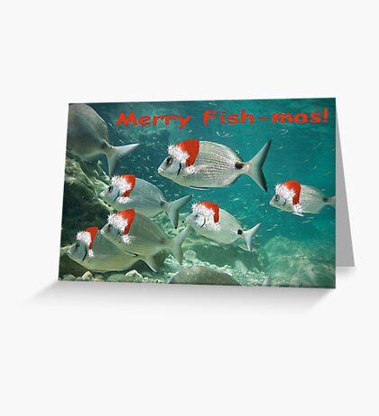 Fish Christmas Card: 3 Greeting Card