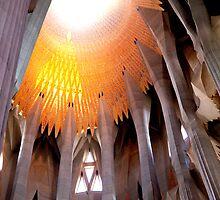 La Sagrada Familia, Barcelona 2011  by Frank Bibbins