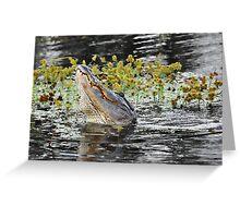Roaring Alligator Greeting Card
