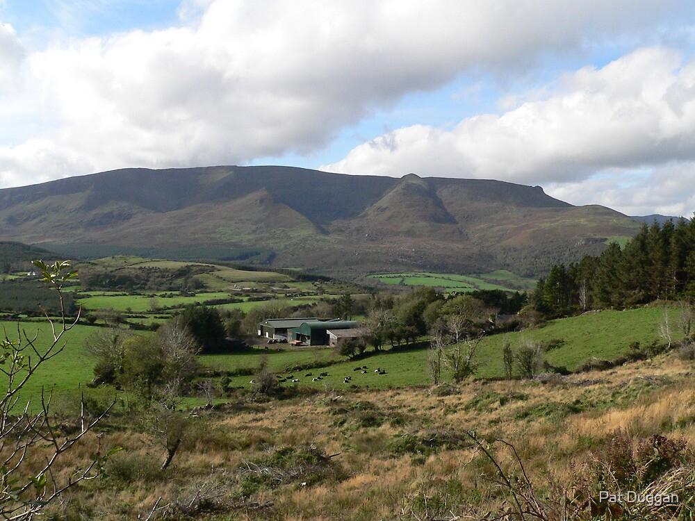 The Farm,,,,, by Pat Duggan
