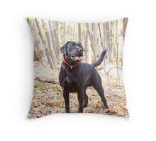 My Dog Brody Throw Pillow
