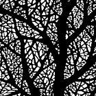 Tree Geometry by Kitsmumma