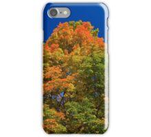 Maple Mountain iPhone Case/Skin