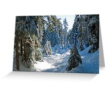 Beautiful BC Winter Day Greeting Card
