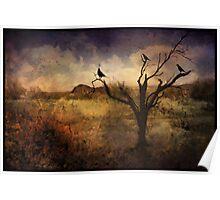 A Desert Dream Poster