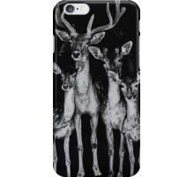 Deer iPhone Case/Skin