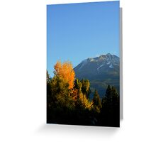 """Shasta Colors"" Greeting Card"