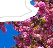 Sawsbuck (spring) used aromatherapy Sticker