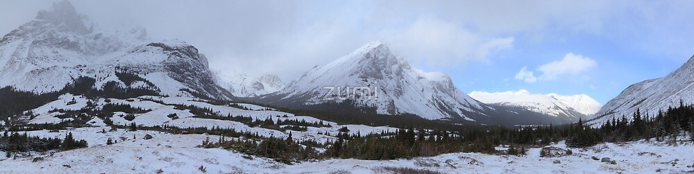 Elbow Pass valley II by zumi
