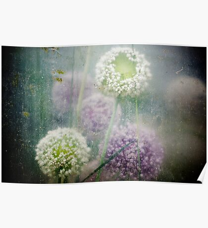 Greenhouse flowers Poster