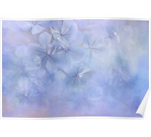 flower clouds Poster