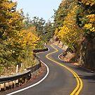 Chuckanut Drive, Bellingham, WA by Barb White