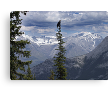 Majesty Canvas Print