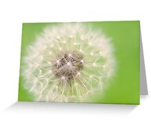 zesty twist on the dandelion Greeting Card