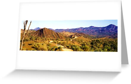 Flinders Ranges Panorama by Michael John