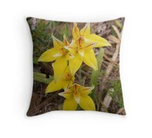 Cowslip Orchid - Western Australia Throw Pillow
