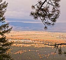 A view from the mountain by Bryan D. Spellman