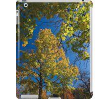 Maple Tree Framed iPad Case/Skin