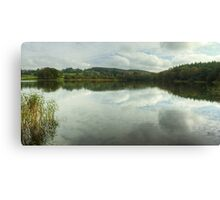 Esthwaite Water, The Lake District Canvas Print