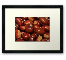 Chestnuts 2011 Framed Print