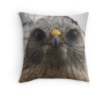 Red Shouldered Hawk Throw Pillow